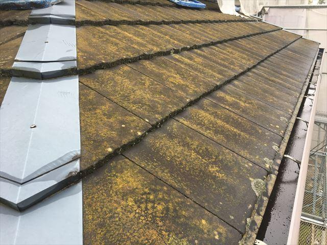 洗浄前屋根