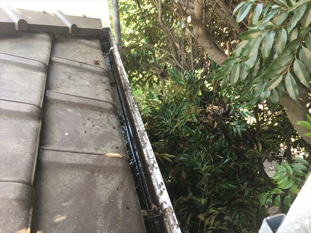 軒樋に葉っぱ詰まり除去