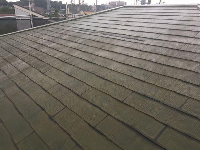 屋根下塗り後、マイルドシ-ラ-EPO