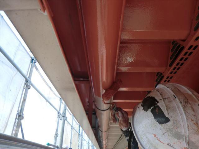 軒天、雨樋塗装、クリーンマイルドシリコン