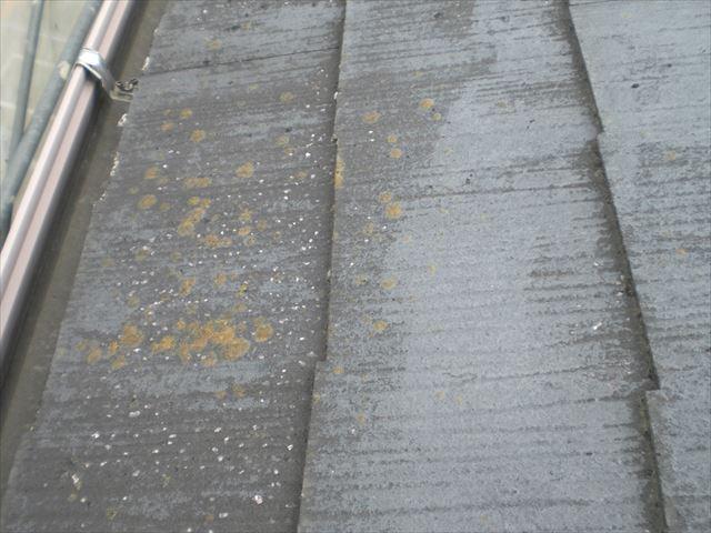 高圧洗浄前屋根M邸