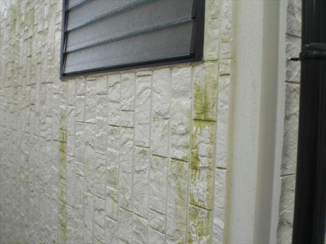 T邸 外壁洗浄前