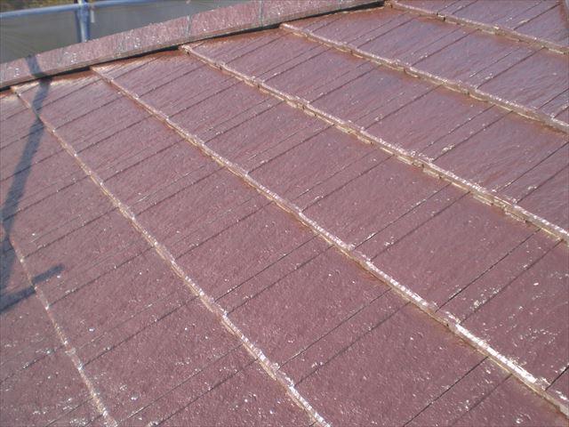 瓦屋根 塗装前