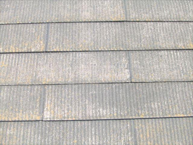 屋根、高圧洗浄前