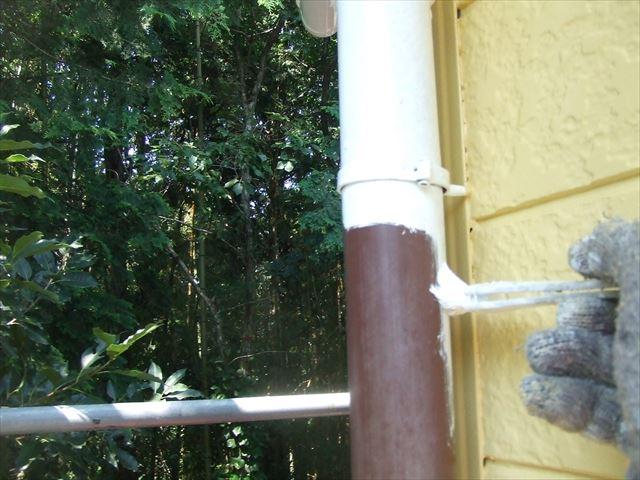 竪樋1回目塗装、コスモマイルドシリコン2