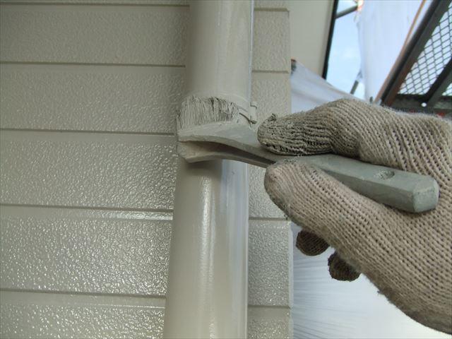 竪樋2回目仕上げ塗装、クリーンマイルドシリコン