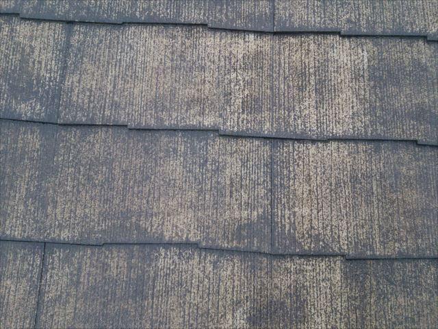 屋根下塗りシーラー塗装後